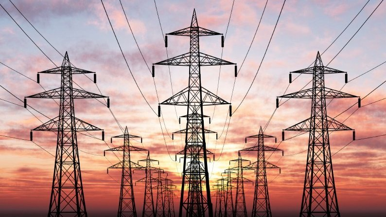 Elettromagnetismo – parte III: elettrosensibilità