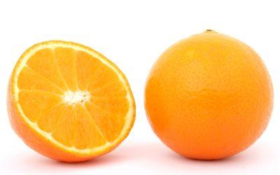 Perché Senti il Bisogno di Frutta & Verdura nella Dieta Carnivora